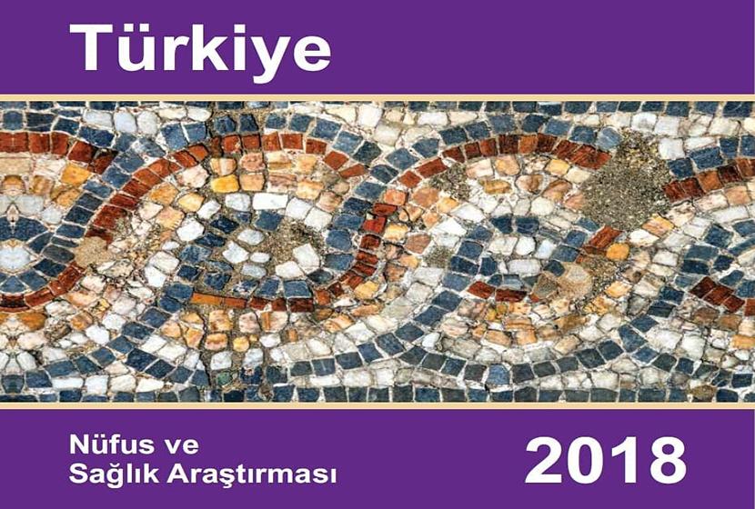 2018 Türkiye Nüfus ve Sağlık Araştırması Sonuçları Açıklandı